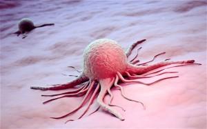 dna kanser