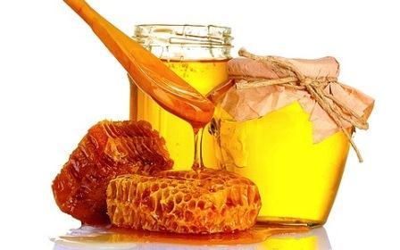 madu lebah sebagai ubat kanser
