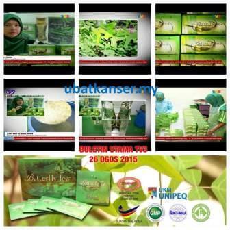 Daun Rerama Di Buletin Utama TV3