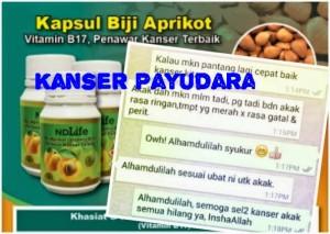 Penawar Kanser Payudara_badan ringan_ubatkanser.my