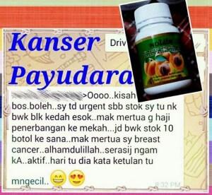 Penawar Kanser Payudara_ketulan mengecil_ubatkanser.my