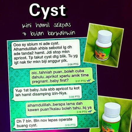 Penawar Cyst 11